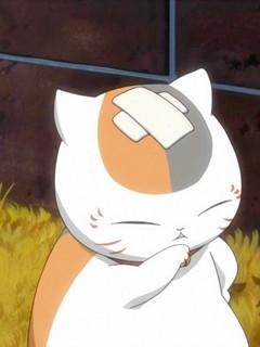 猫咪老师高清桌面_求这几张猫咪老师的手机壁纸