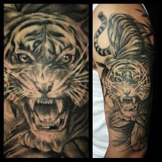 求几张小一点的纹在肩膀上老虎纹身图片