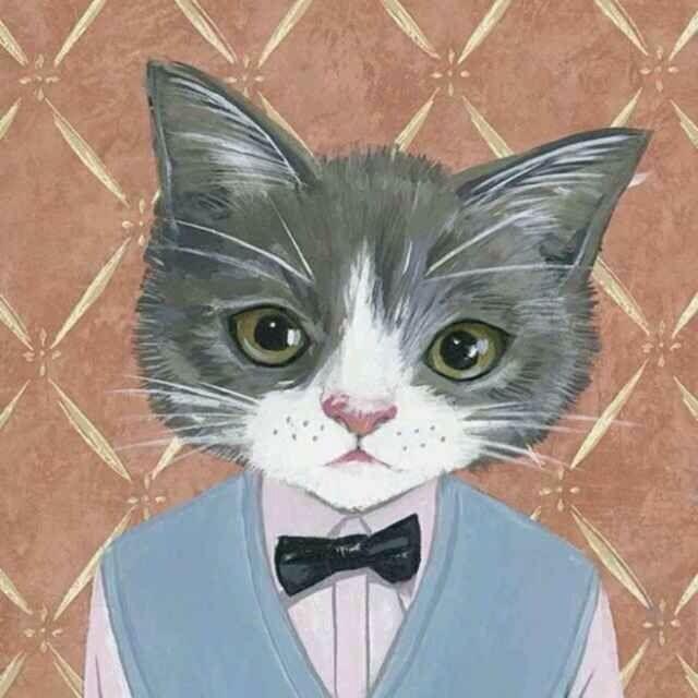 寻找猫咪情侣头像