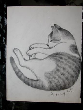 谁有类似于素描小动物的图片