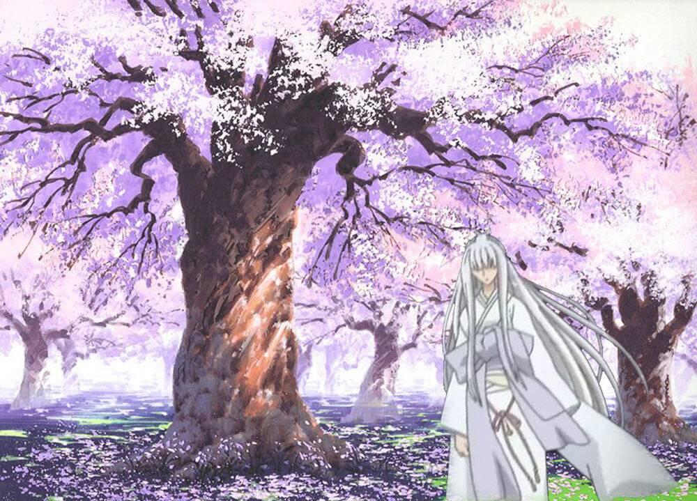 求一些日本唯美动漫女人物图 大概是 一个少女 樱花飘零 一把扇子 恩