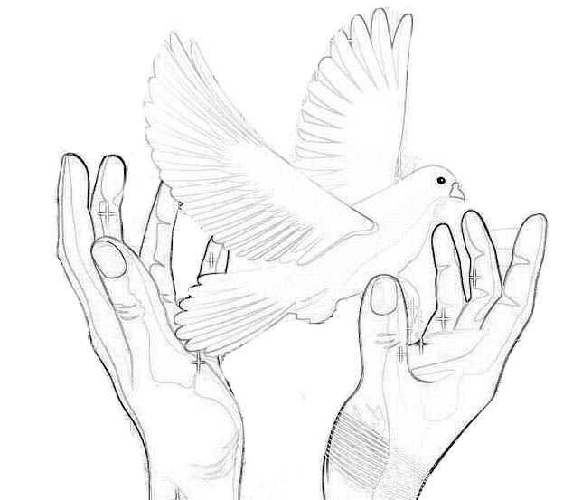 帮我查一个双手放飞鸽子的图片儿,要画出来的,有好评谢谢图片