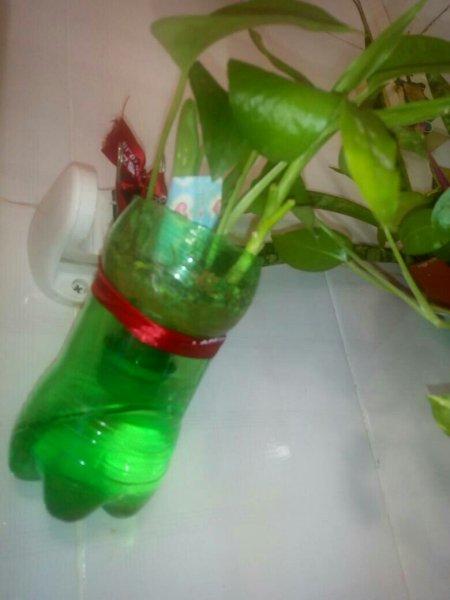 塑料瓶手工制作花盆要留孔吗