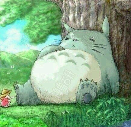 求可爱龙猫的高清手机壁纸