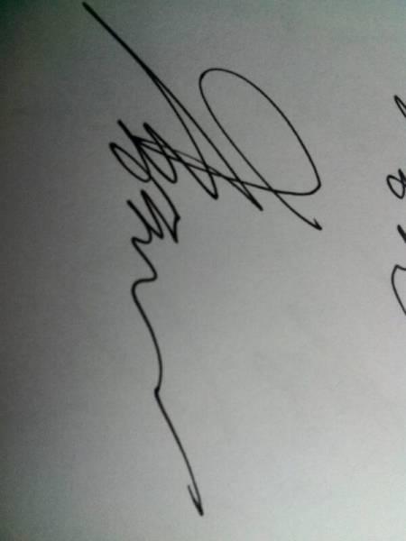 我叫李亮那位能给我设计一个艺术签名好写点的