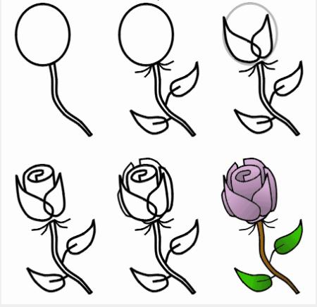 怎么画玫瑰花简单的画法图片