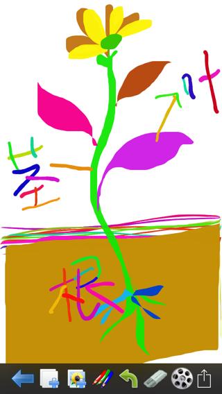 植物的根茎叶分别在哪里,请画出示意图