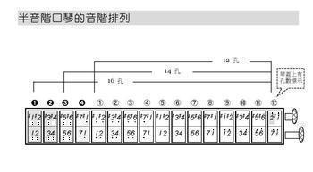 求14孔半音阶口琴音阶图图片