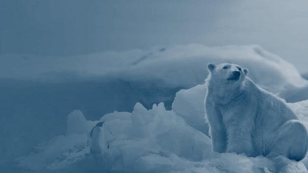 2050年的气候是什么样?