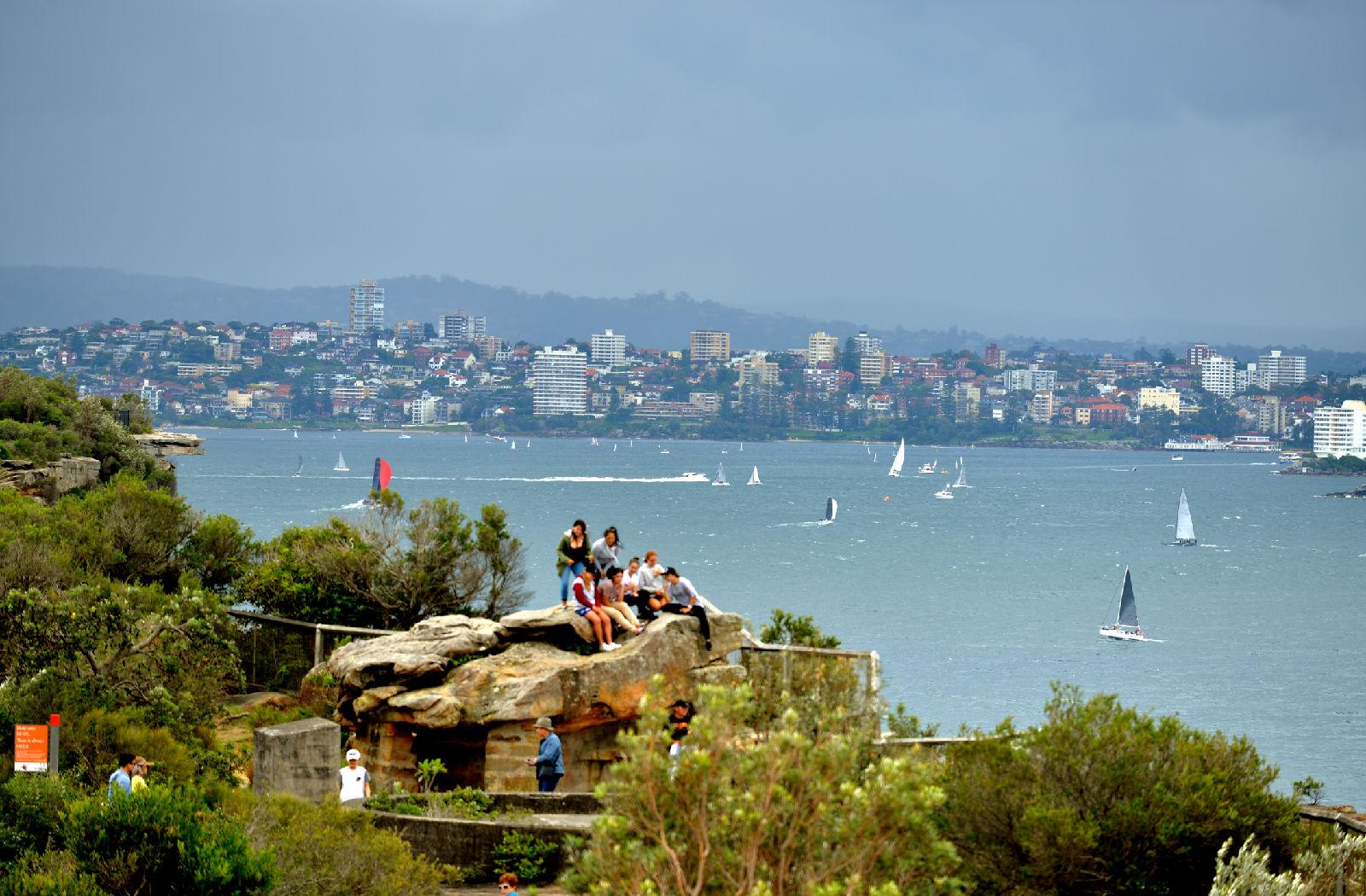 澳大利亚旅游攻略图片334