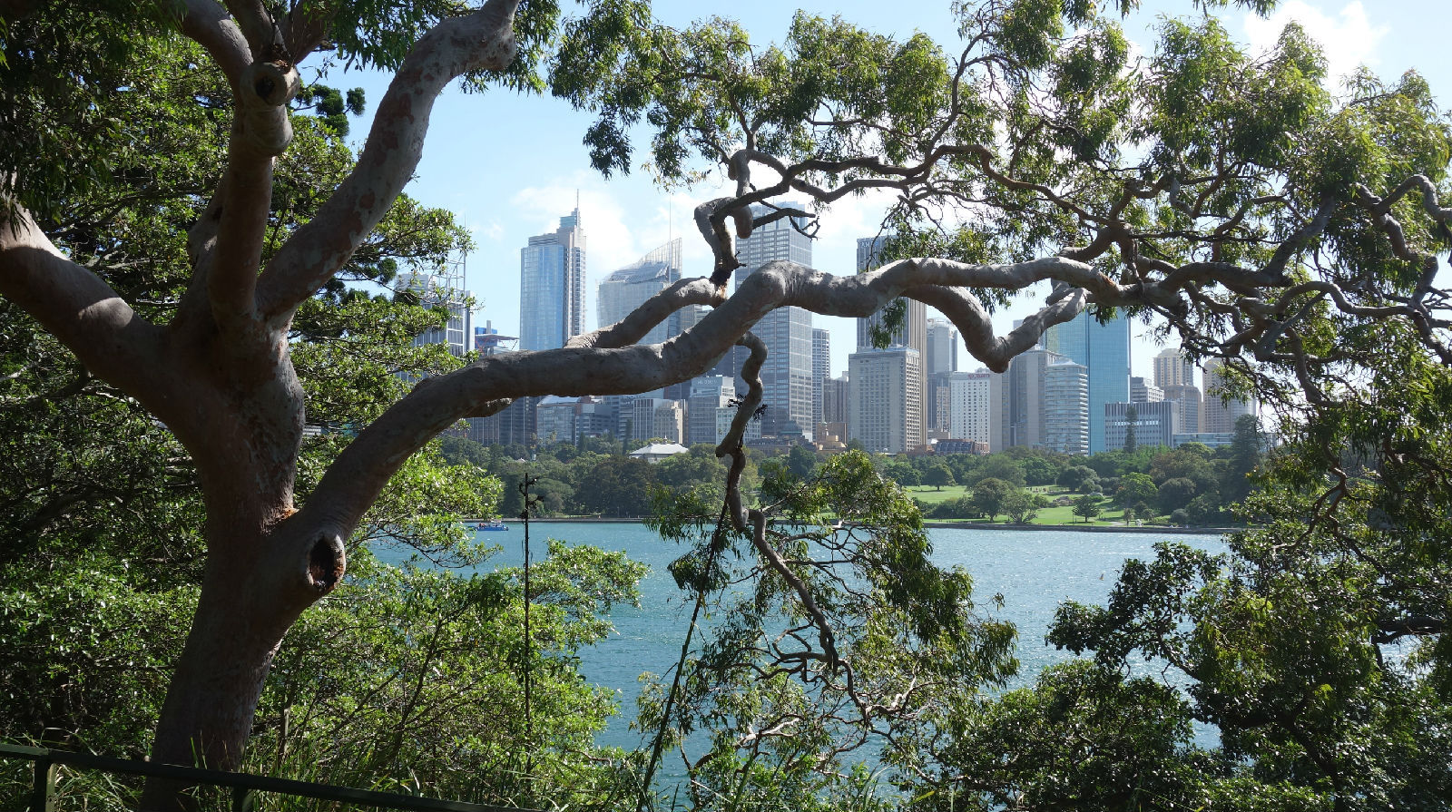 澳大利亚旅游攻略图片499