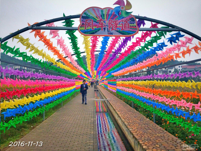 衢州旅游攻略图片168