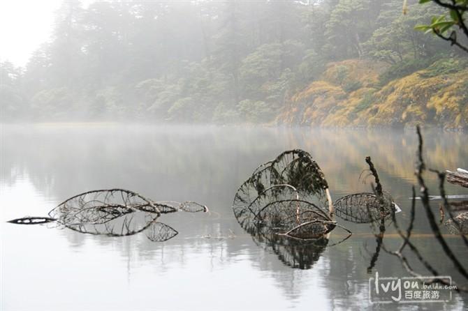 丽江老君山旅游攻略图片6