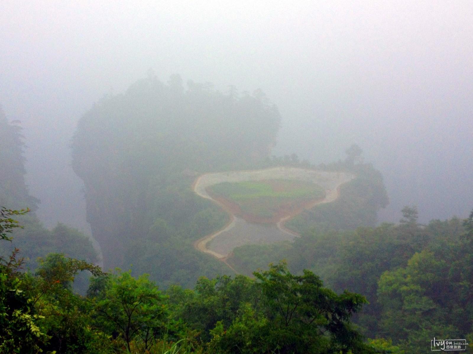 张家界国家森林公园旅游攻略图片21
