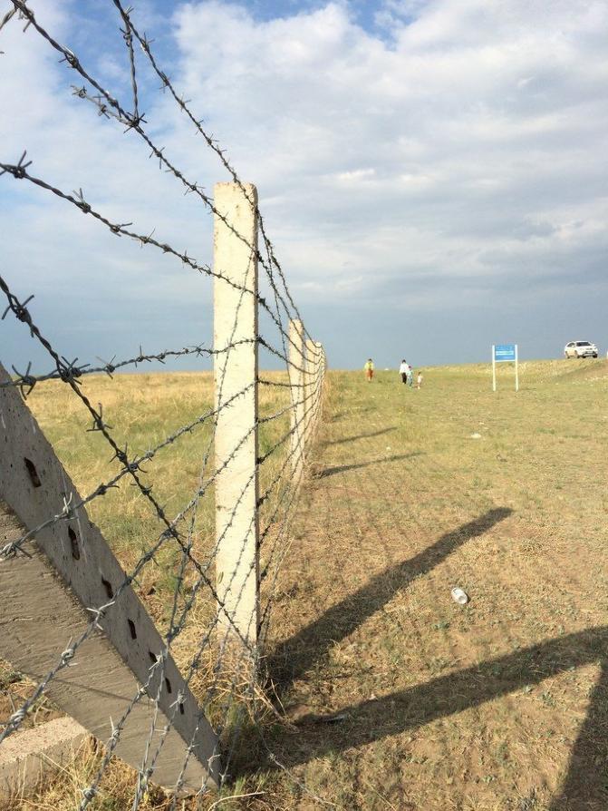 呼伦贝尔大草原旅游攻略图片98