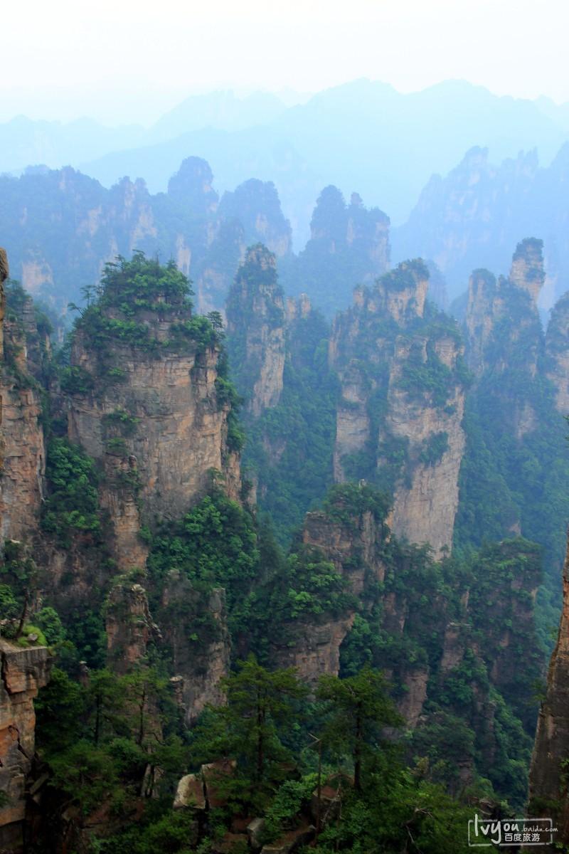 张家界国家森林公园旅游攻略图片16