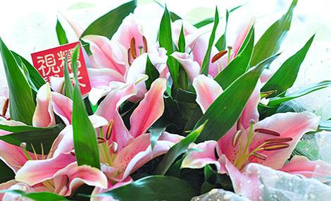 花仙子鲜花礼仪
