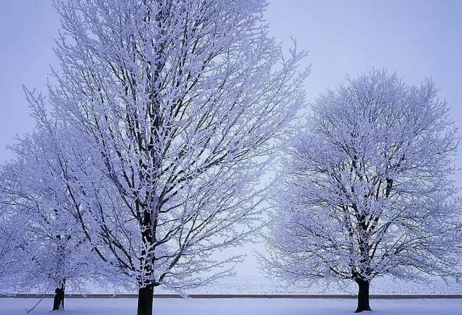 描写早上雪景的诗词