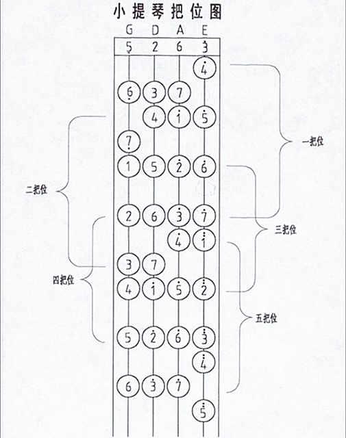 初學小提琴的指法圖片