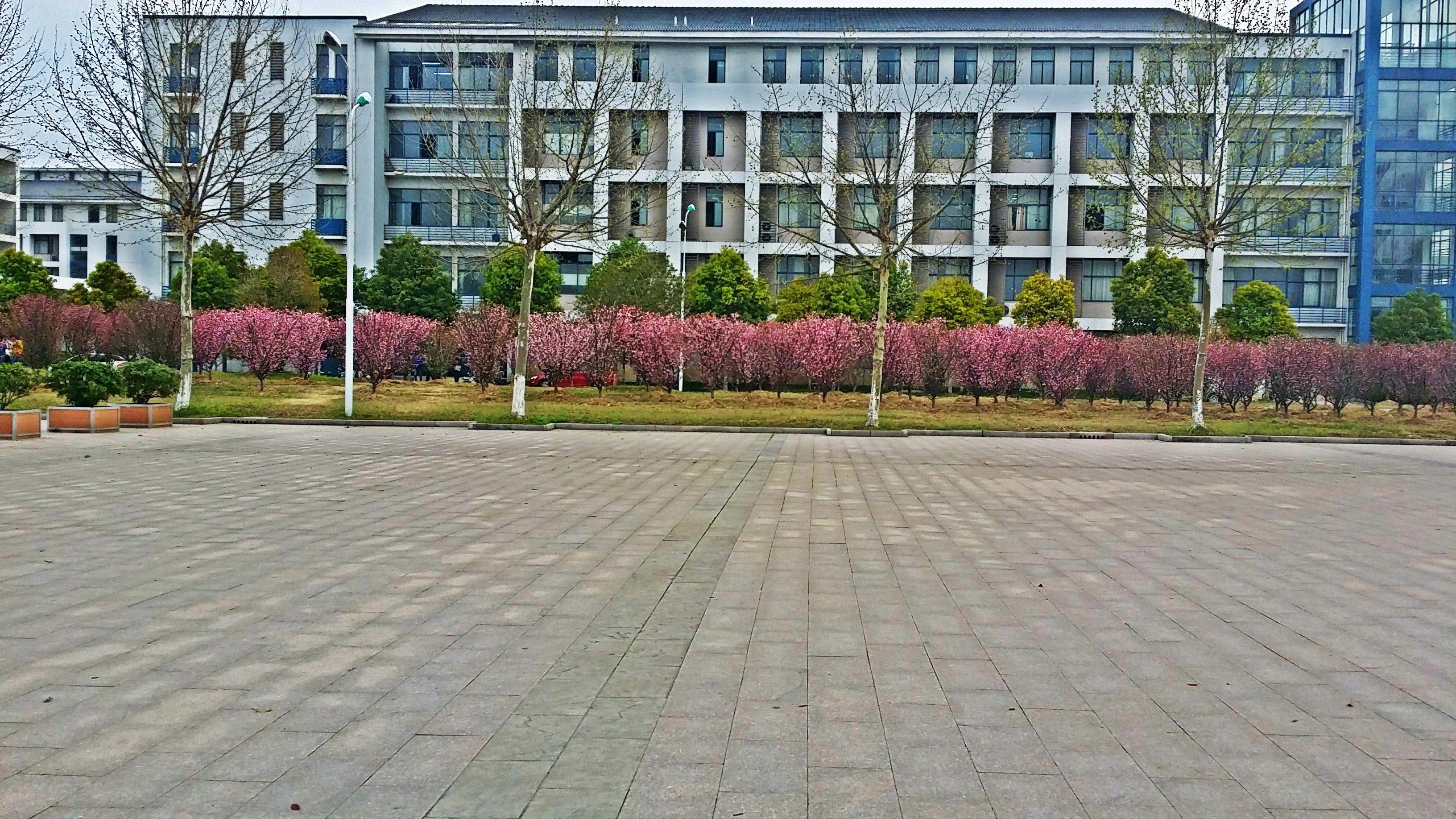 江苏财经职业技术学院怎么样_2014年高考考了190分能上江苏财经职业技术学院吗?这个学校怎么样?