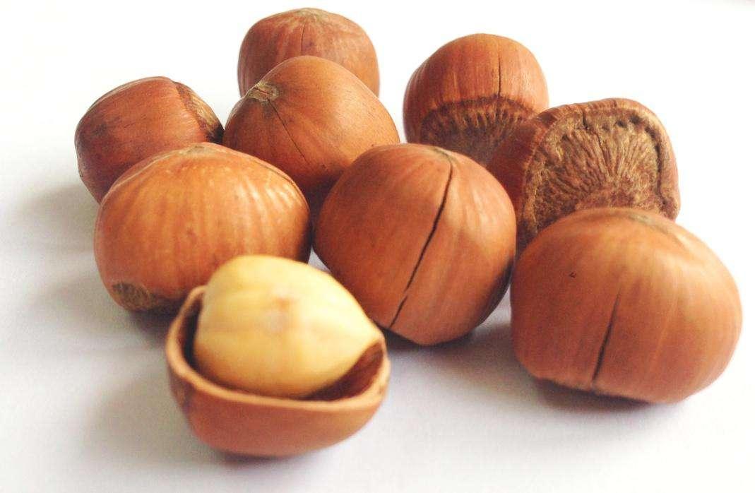 哪些食物最有益肝脏_蛋白质较高的坚果有哪些_百度知道