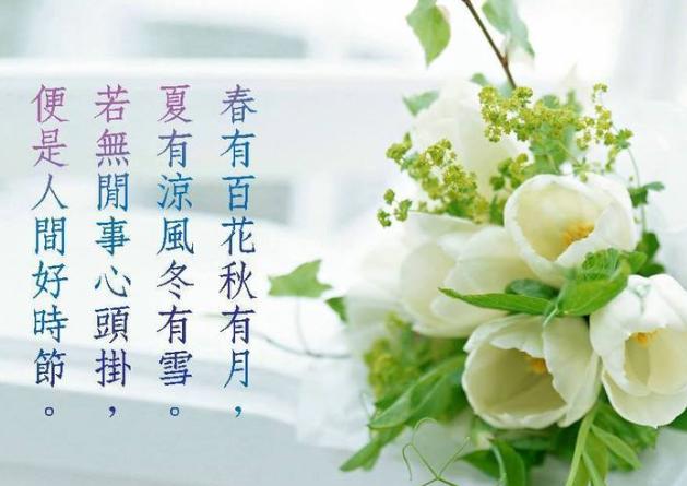Image result for 百花