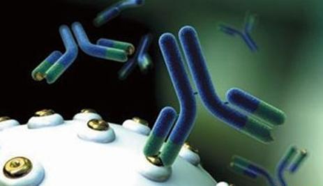 抗原抗体特异性结合_简述抗体的生物功能_百度知道