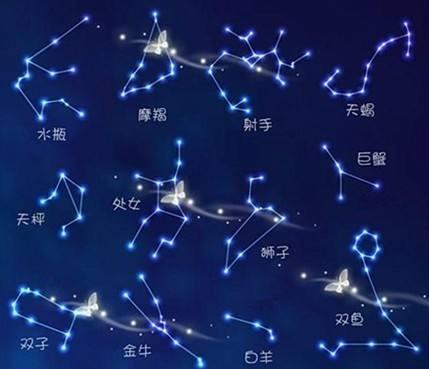 十一月出生的什么星座
