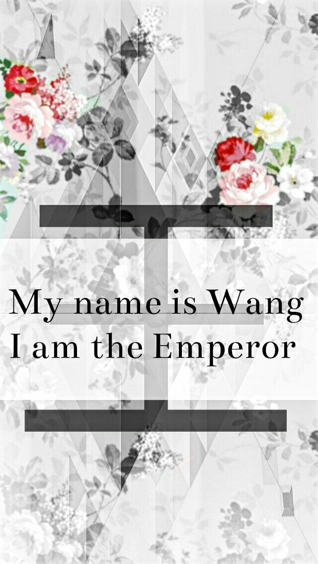 姓氏图片文字我姓胡_姓氏王的文字图片,要各种版本的图片,不要只是同一种_百度知道