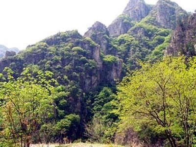 溝崖自然風景區的景區地址