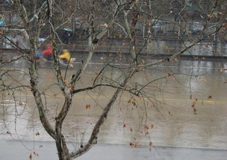 冬雨诗词 描写冬雨的诗句有哪些