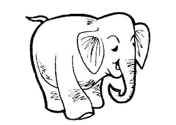 大象怎么画