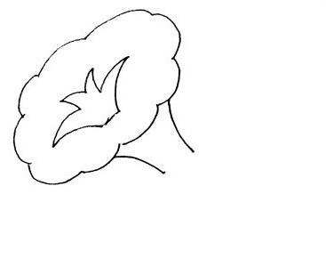 牵牛花的叶子有椭圆形的,也有掌形的.
