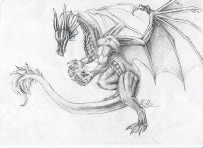 有谁能发几张霸气的西方龙图片给我,要铅笔画的,尽量清晰一点