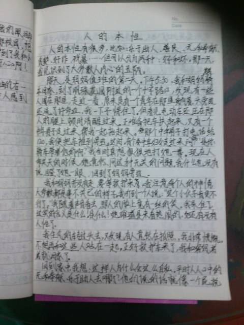 《作业》作文500字