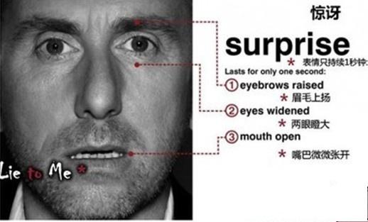 社会性情感包括_从心理学角度来讲,眼睛往左看和往右看分别表现什么?是分别 ...