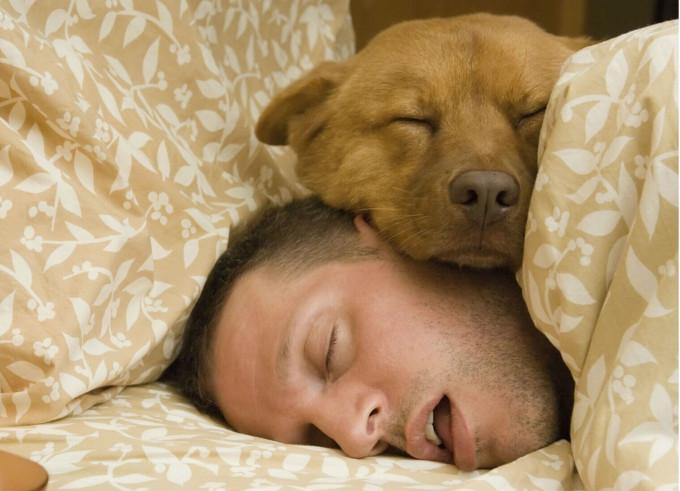 睡觉时突然一抖,踩空一样,是怎么回事