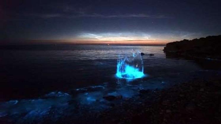 """英国出现梦幻""""荧光海岸"""",源自浮游生物的自卫机制"""