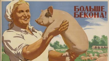 蘇聯如何實現人人吃得上豬肉?的頭圖