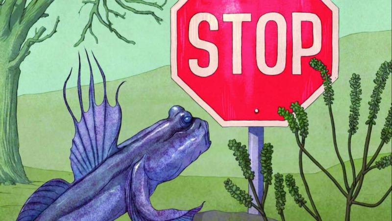 该如何消除进化的黑暗面?