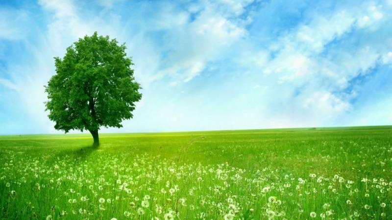 建设生态文明,环境史帮助人类恢复失去记忆