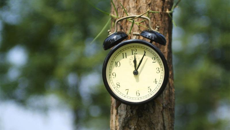 你了解你自己的生物钟吗?