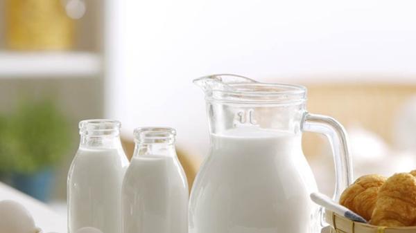 羊奶牛奶大PK,羊奶真的比牛奶好吗?