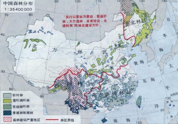 人均森林占有量_中国矿产人均占有量表