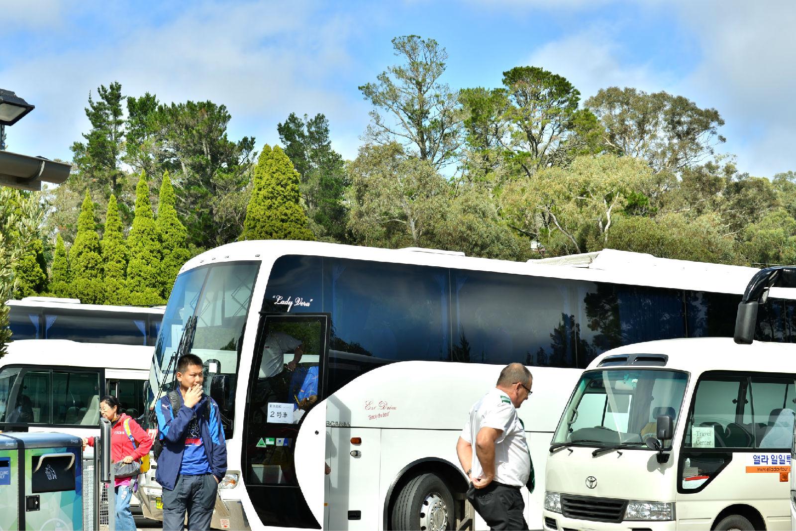澳大利亚旅游攻略图片375