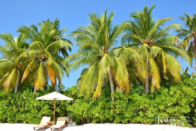 马尔代夫港丽岛旅游攻略图片35