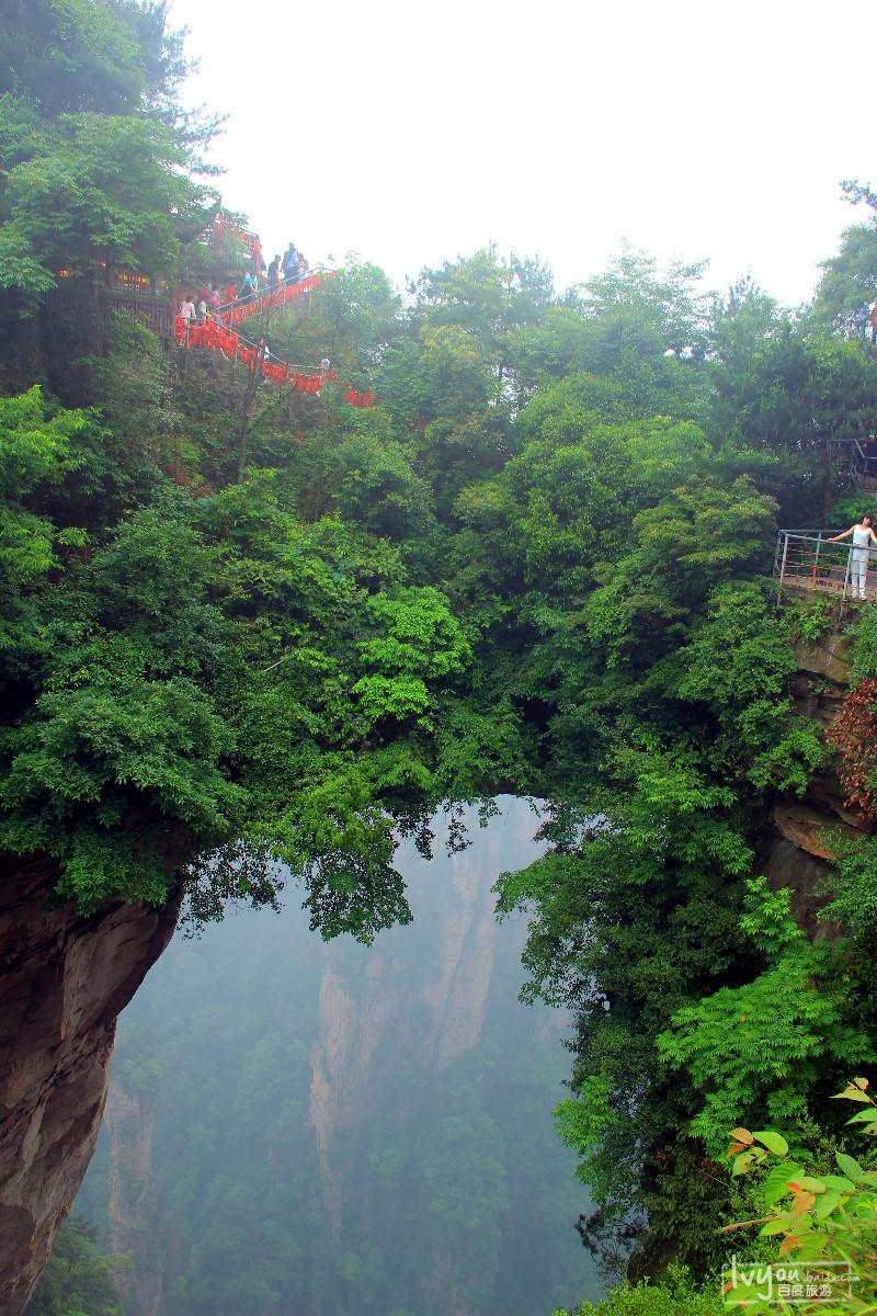 张家界国家森林公园旅游攻略图片24