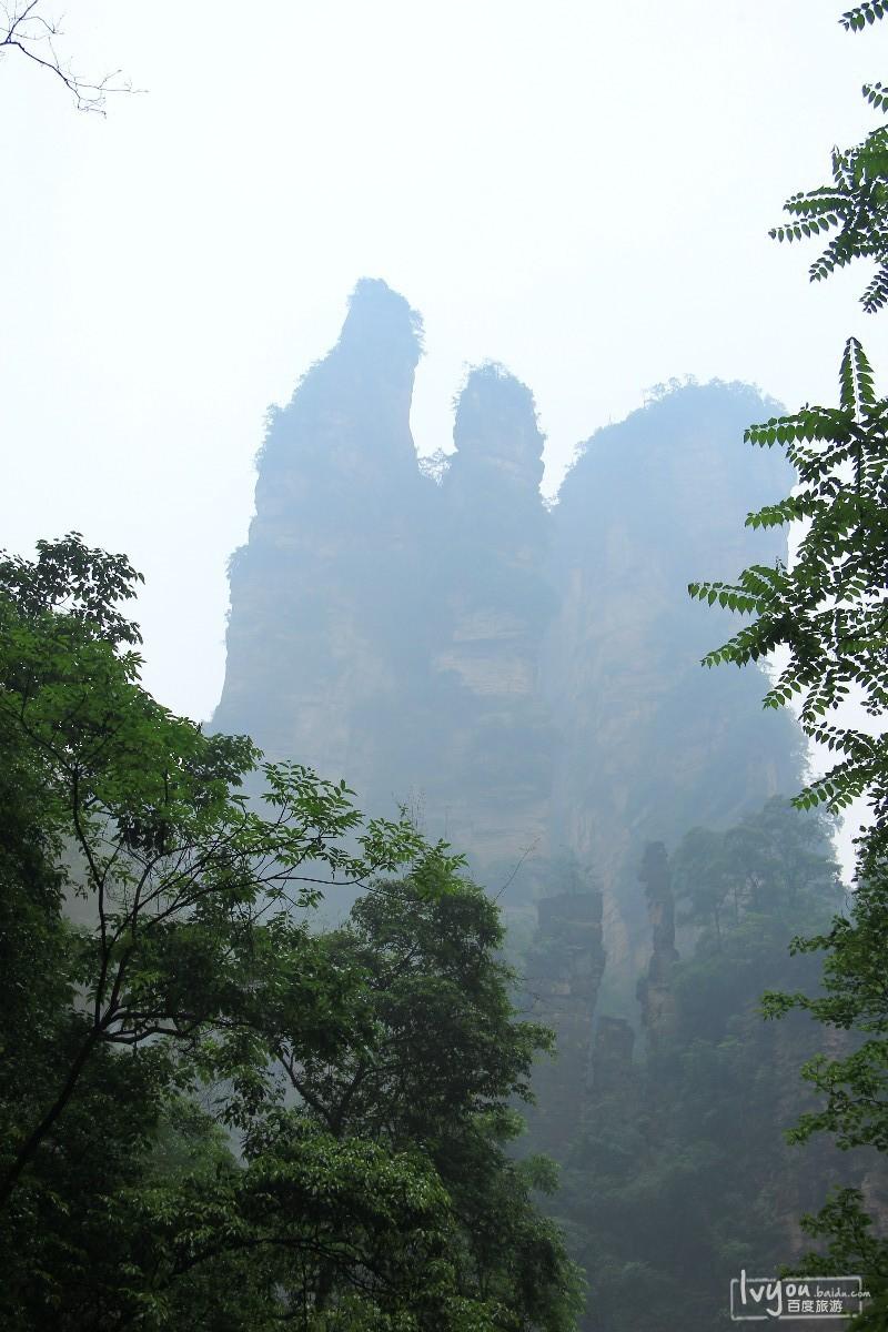 张家界国家森林公园旅游攻略图片38