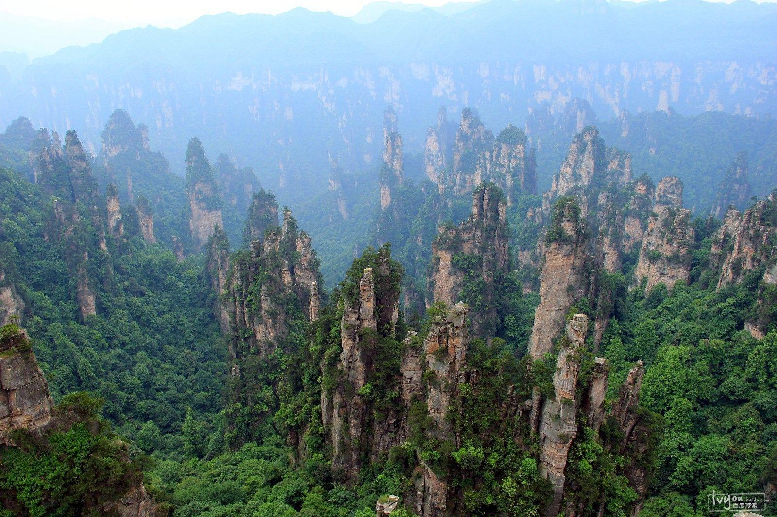 张家界国家森林公园旅游攻略图片11