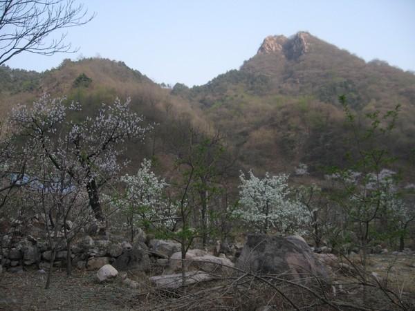 天津蓟县旅游攻略图片30